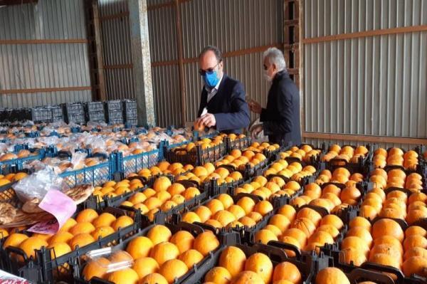 خبرنگاران قیمت میوه تنظیم بازار در قم تعیین شد