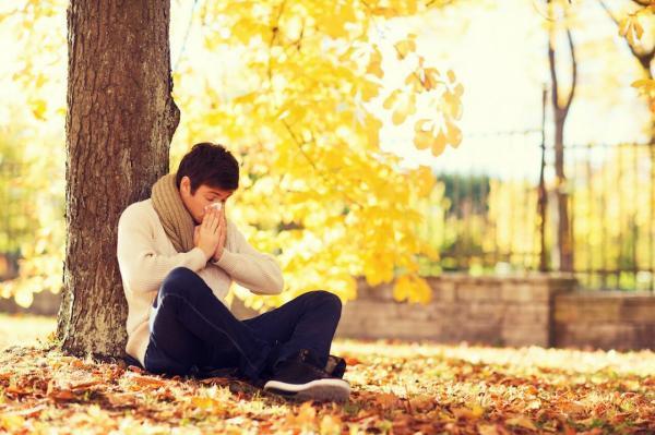 7 نکته برای تسکین آلرژی پاییزی